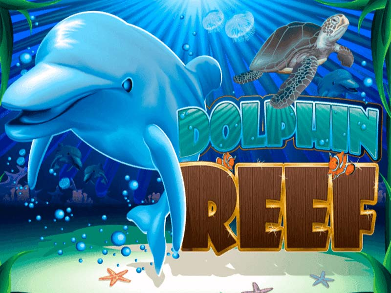 Dolphin Reef Play Strategy and Guidelines for 918kiss on hengheng2